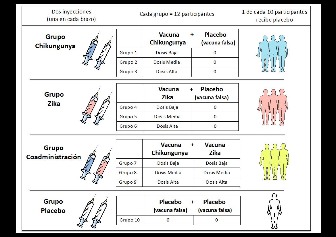 chikunguyazikavaccine.png