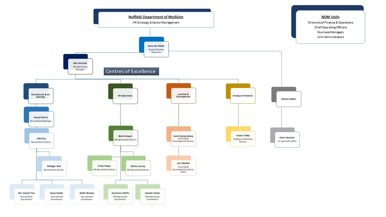 NDM ORC HR organisation chart